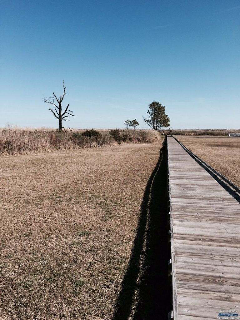 Another view of the walkway to the observing deck.